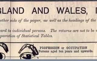 1911 census doodle