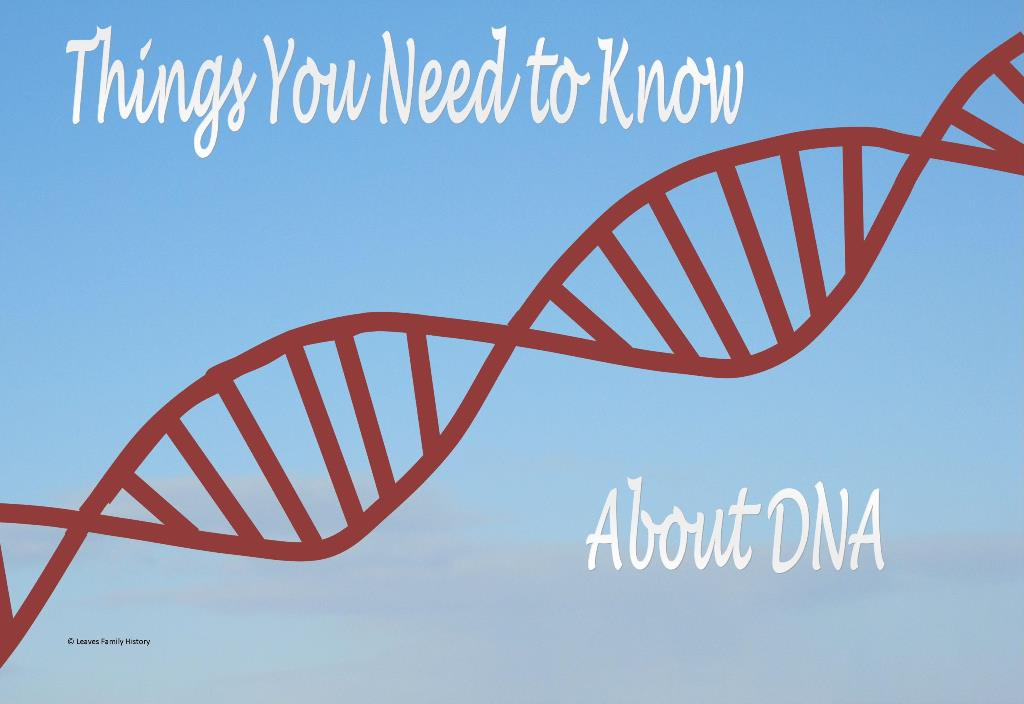 Things you need to know abut DNA